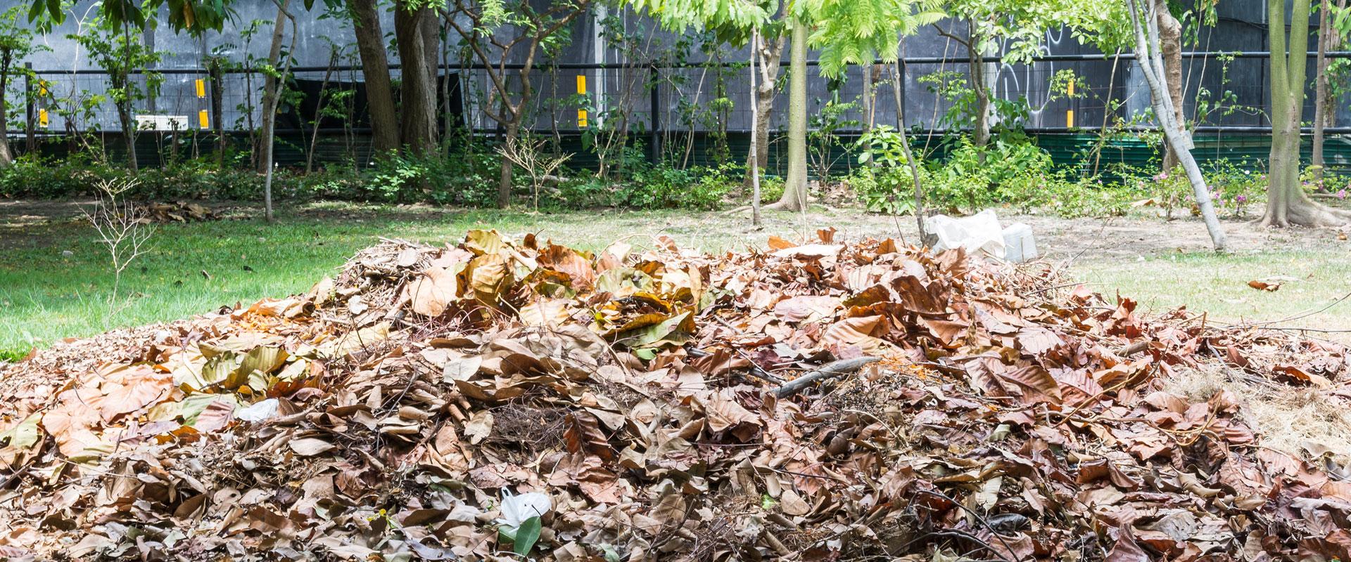 Get rid of your Garden Waste